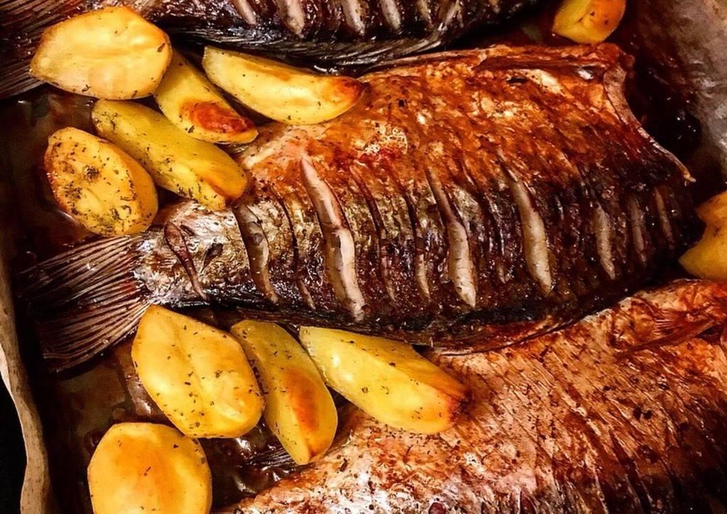 Рыба на костре на решетке: рецепты, как приготовить на огне