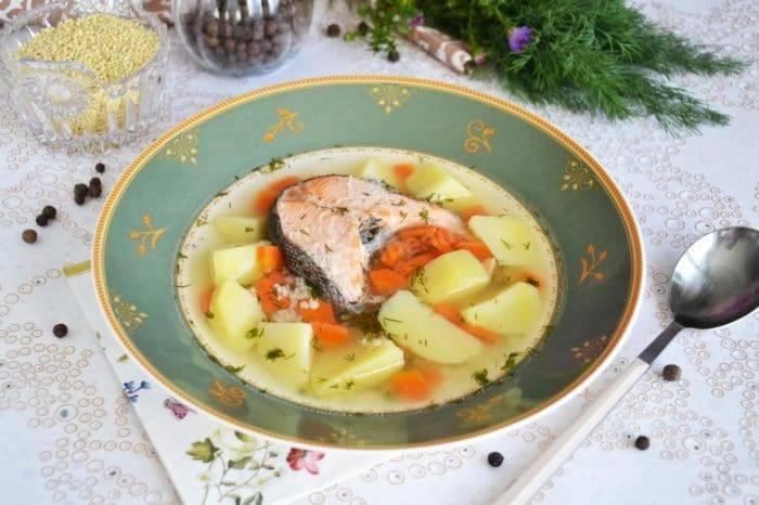 Уха из форели: как правильно приготовить изумительный суп из пресноводной рыбы
