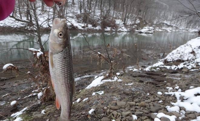 Рыбалка весной в мутной воде на речке: особенности и секреты ловли
