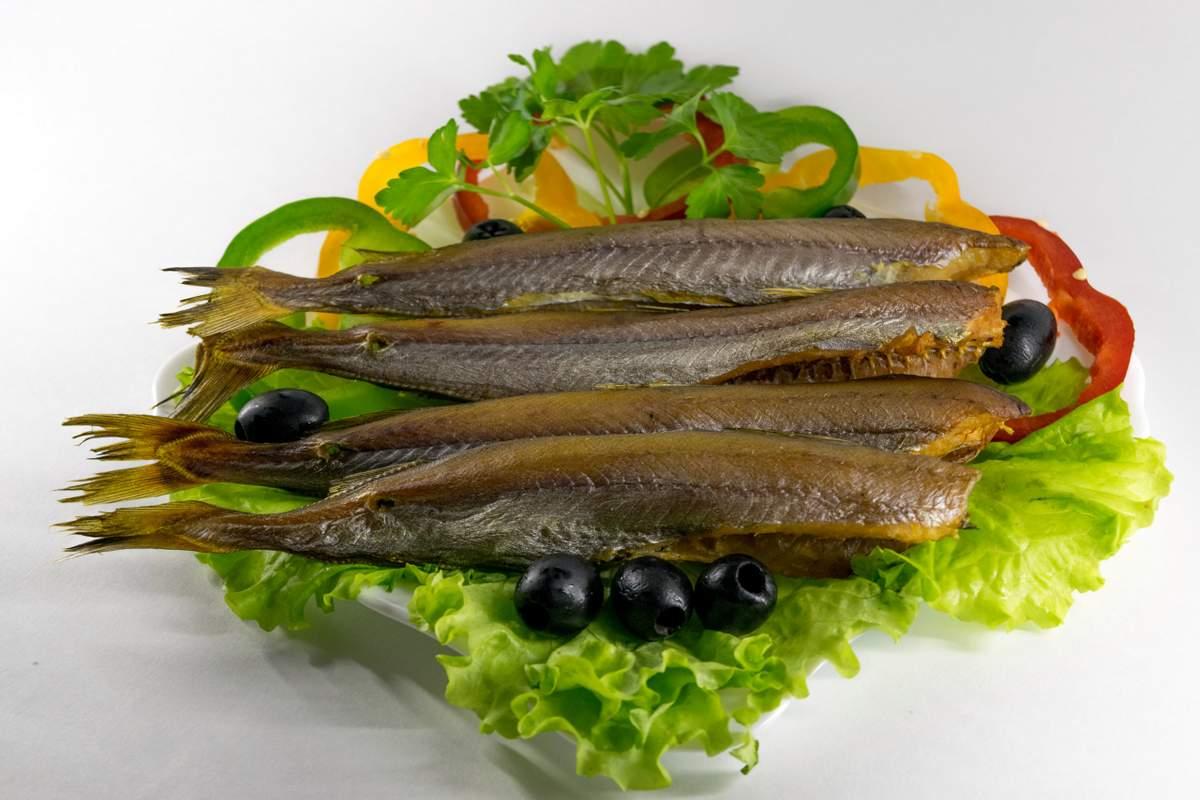 Рыба путассу: польза и вред для организма, состав и калорийность (+отзывы)