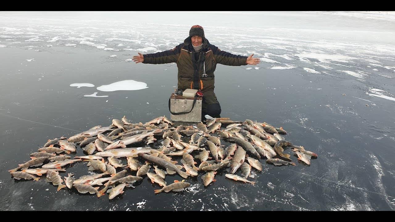 Рыбалка в якутии зимой новые видео 2020