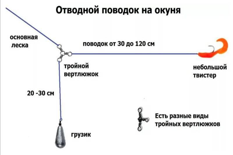 Ловля окуня на отводной поводок – основные нюансы