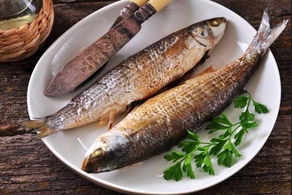 Ценный морепродукт — навага, расскажем о ее полезных свойствах и вкусовых качествах. пищевая ценность и полезные свойства наваги способы приготовления наваги