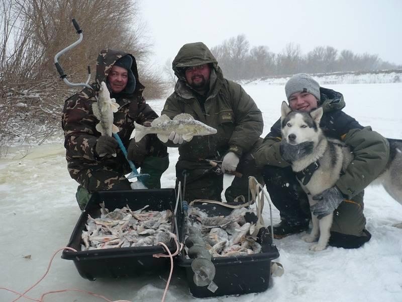 Современная поплавочная снасть для рыбалки на волге. часть i