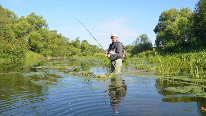 Львовские пруды - рыбалка, цены и контакты