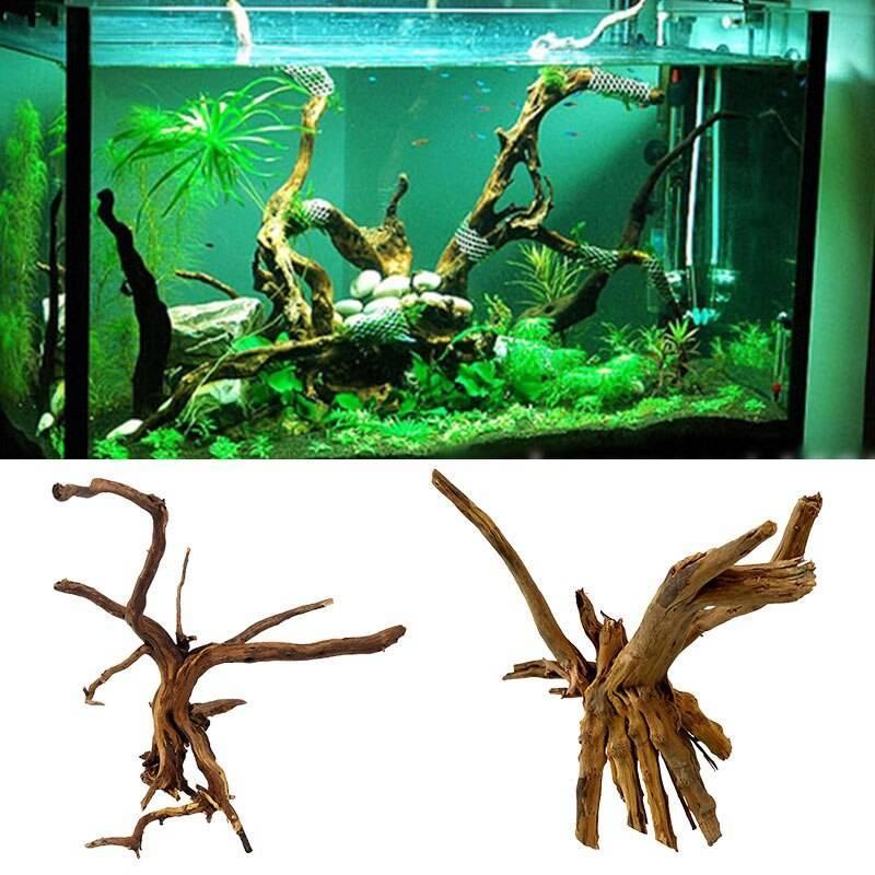 Нужны ли коряги в аквариуме: плюсы и недостатки | плюсы и минусы