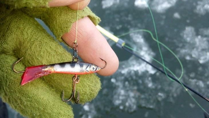 Советы опытных рыбаков по ловле вьюна - читайте на сatcher.fish