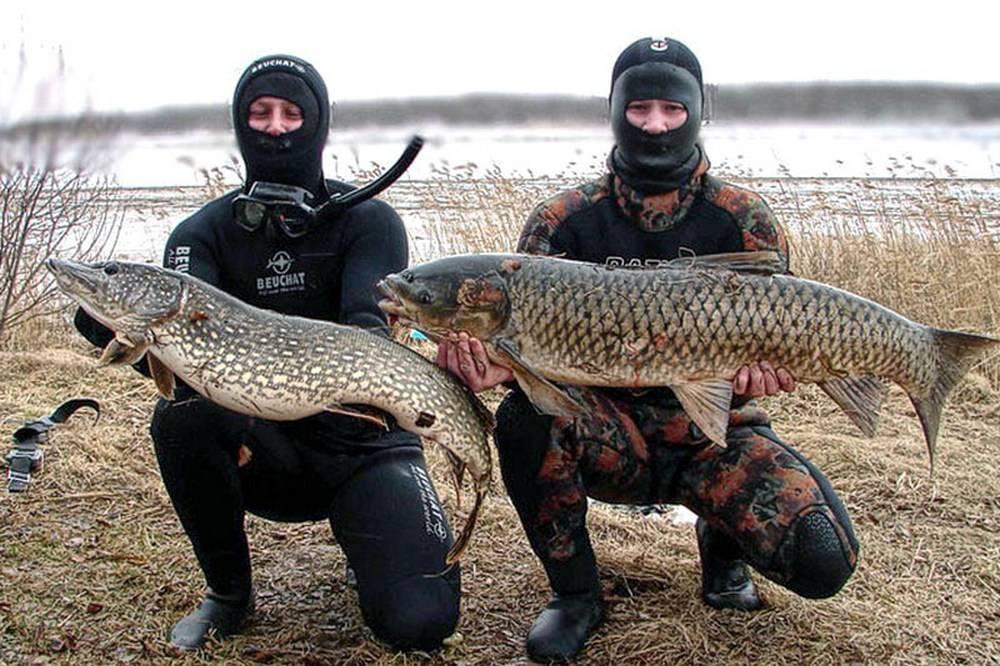 Рыбалка в тверской области — как рыбачить на волге, медведице, озере щучье в твери