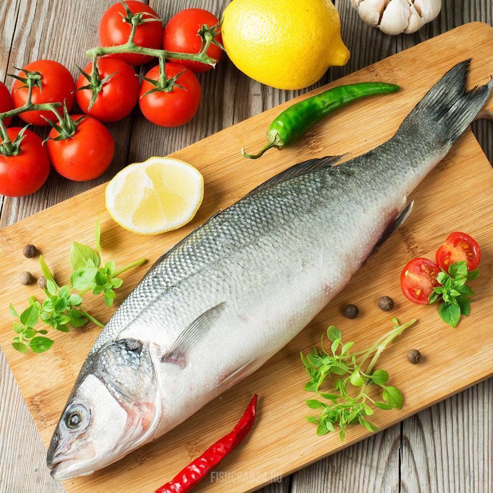 Рыба сибас?: фото и описание. как выглядит сибас?, чем питается и где водится