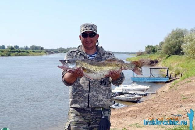 Спиннинг, виды спиннингов, выбор удилища спиннинга для рыбалки