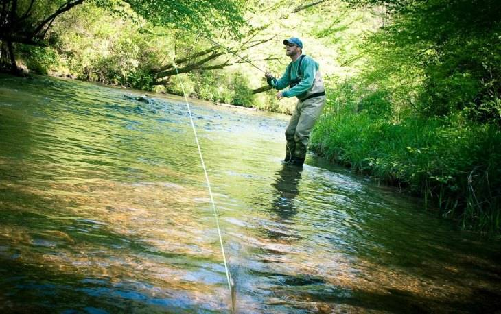 Луфарь - 140 фото рыбы, способы лова и особенности выбора снастей