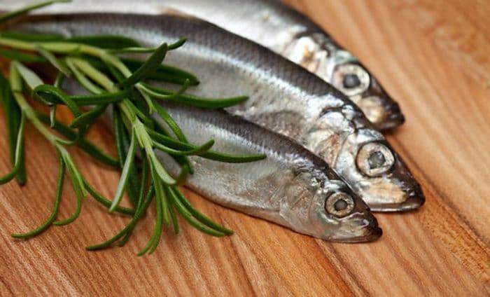 Что собой представляет рыба сайда и как ее готовят? :: syl.ru