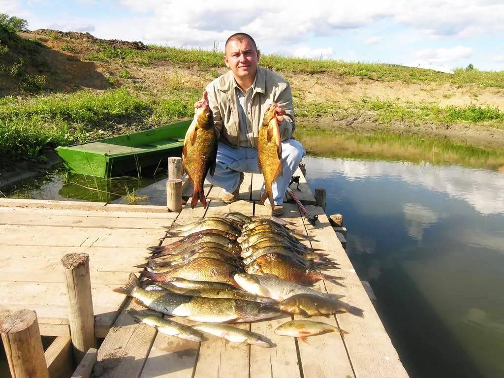 Река шоша – тверская область, подмосковье: рыбалка, карта, отзывы