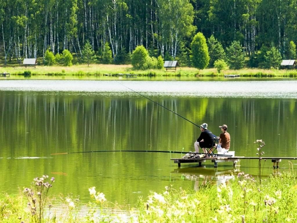 Рыбалка в саратовской области. форум, отчеты рыбаков