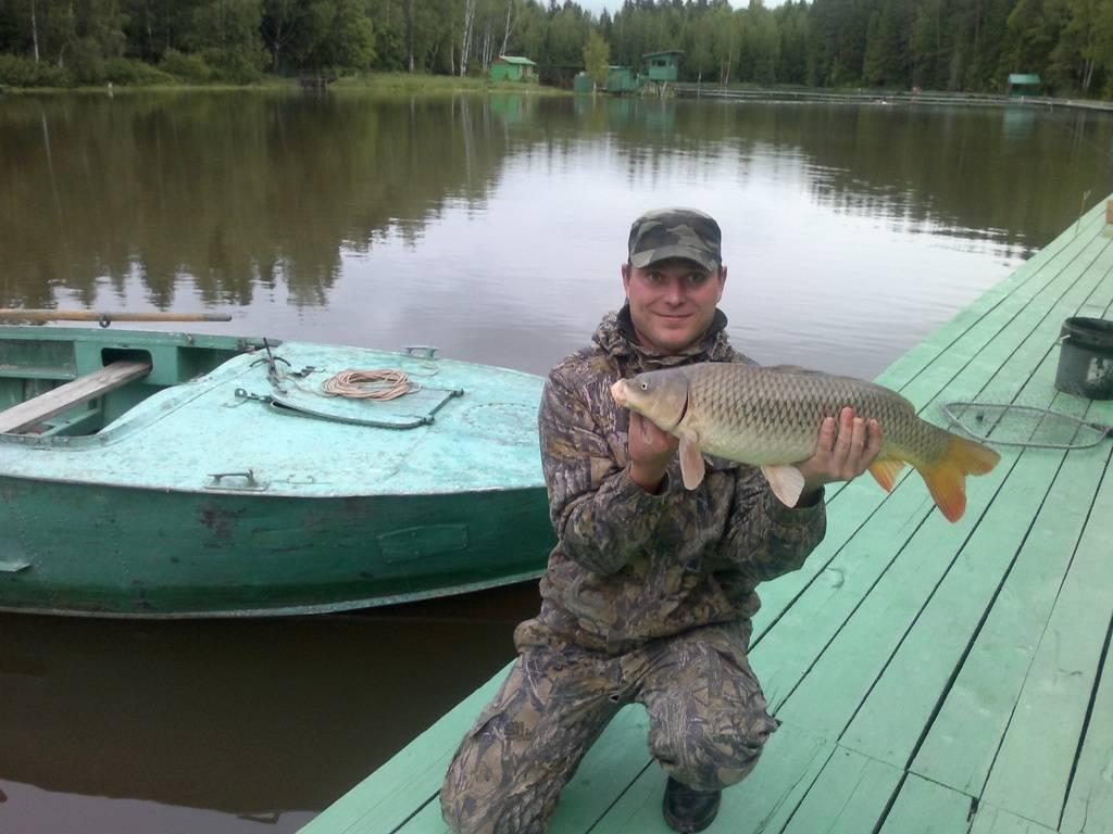 Рыбалка в сергиево-посадском районе (сергиево-посадский г.о.)