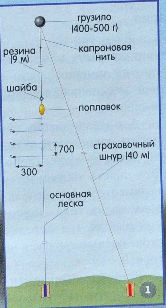Ловим чехонь на ахтубе: способы, снасти и приманки - рыбалка на ахтубе с комфортом - база трёхречье