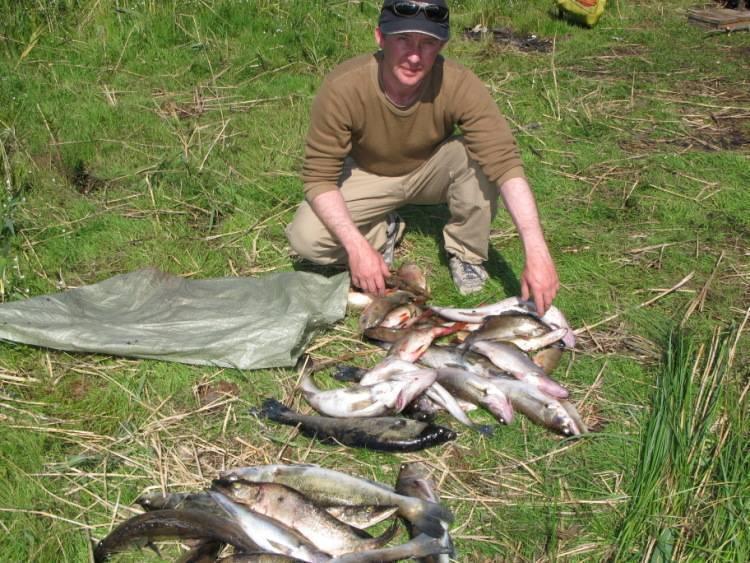 Рыбалка на свири: отзывы, лучшие места для ловли на реке