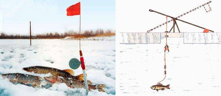 Особенности и тактика ловли щуки в глухозимье