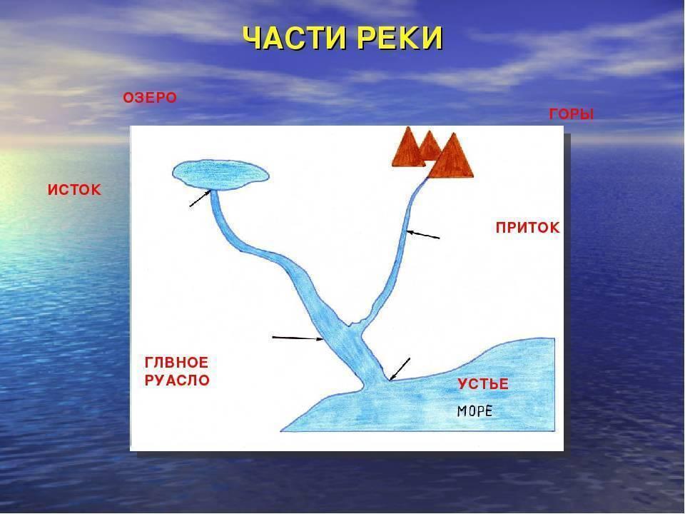 Заказники алтайского края, заповедники и национальные парки – сколько их   где алтай?