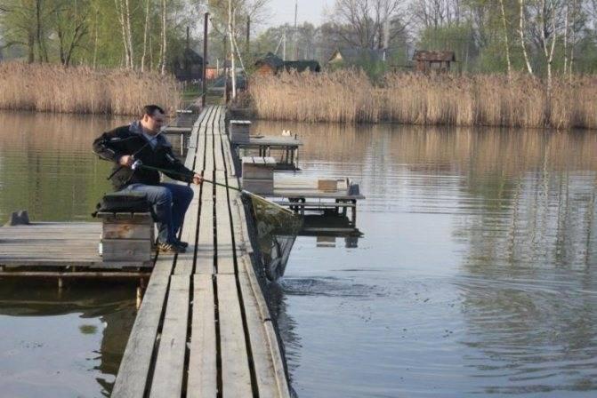 Рыбалка в барыбино - платная рыбалка на форель, отзывы