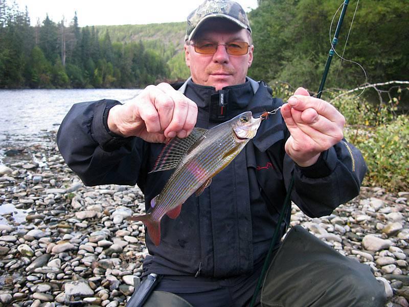 Платная рыбалка и рыболовные туры в кемеровской области