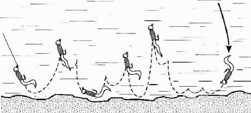 Как правильно ловить чехонь
