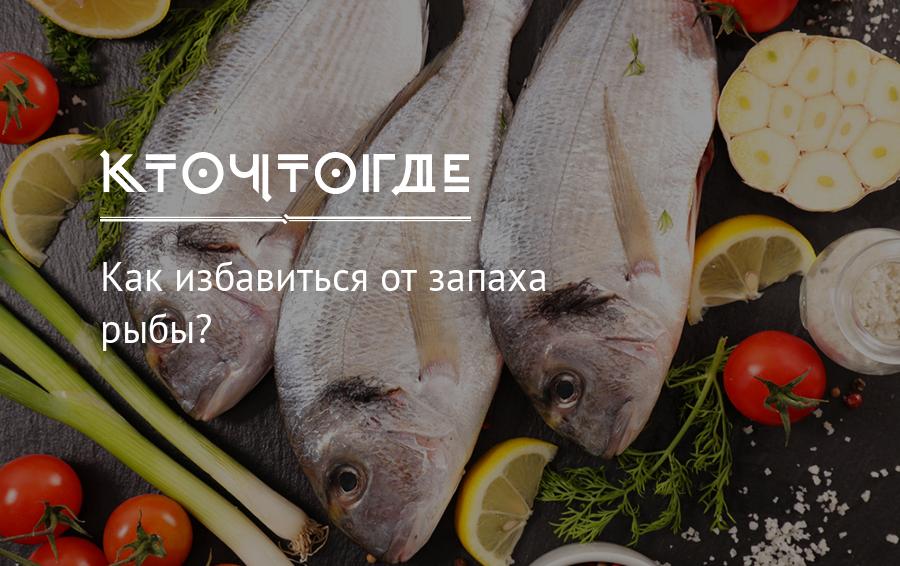 Как избавиться от запаха рыбы в холодильнике: чем удалить тухлый запах, народные способы