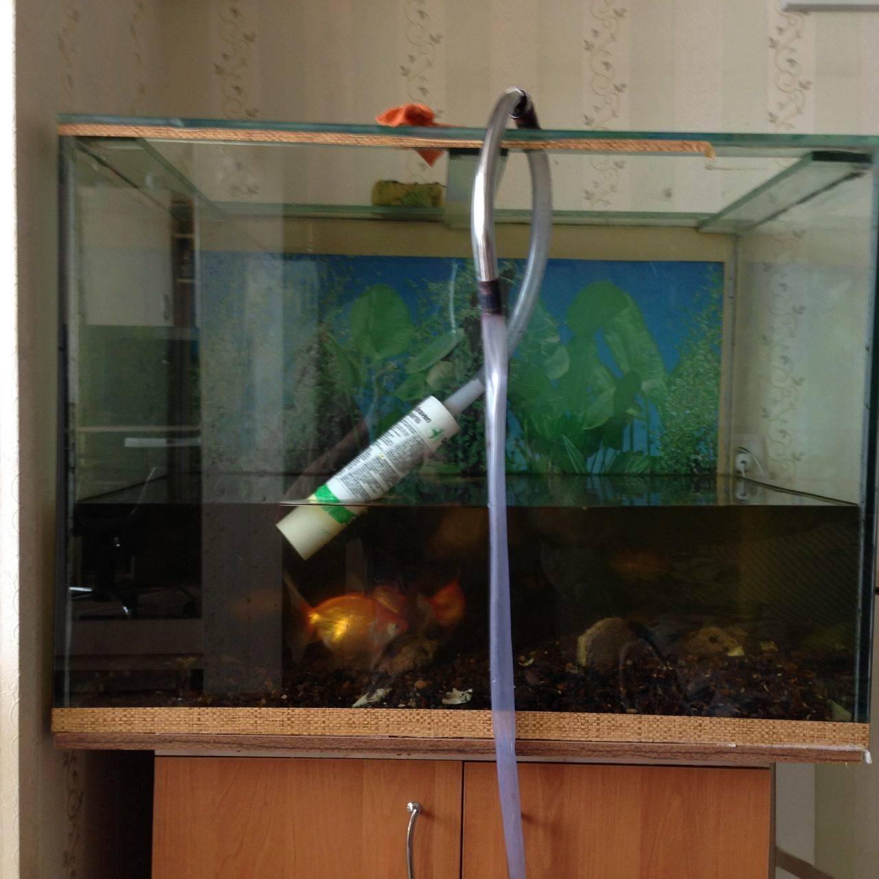 Как чистить фильтр в аквариуме и насколько часто мыть