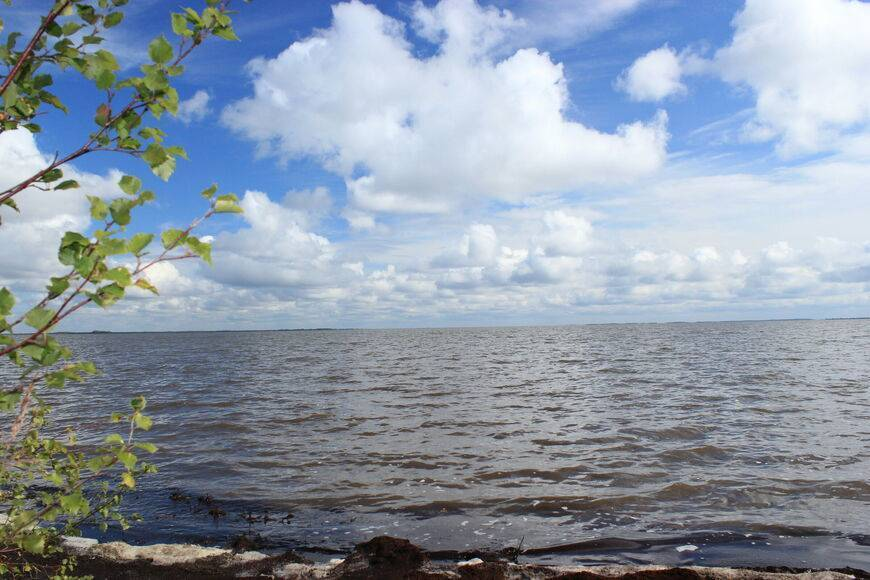 Озеро варчато