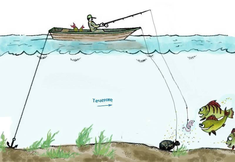 Ловля леща на ахтубе: советы, фото и видео