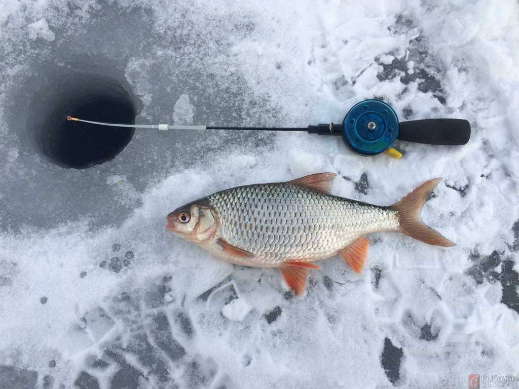 Календарь рыболова на март 2020
