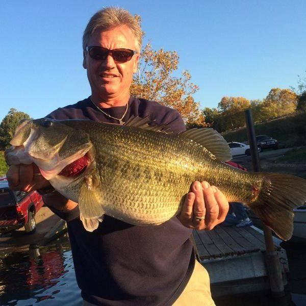 Озеро купай в курганской области: рыбалка, как доехать, отели — туристер.ру