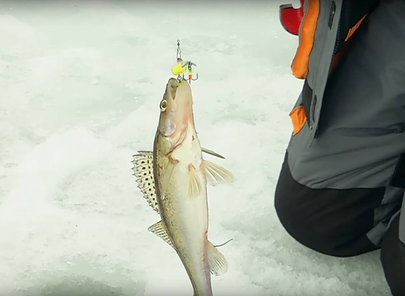 Ловля судака на балансир зимой - на рыбалке!