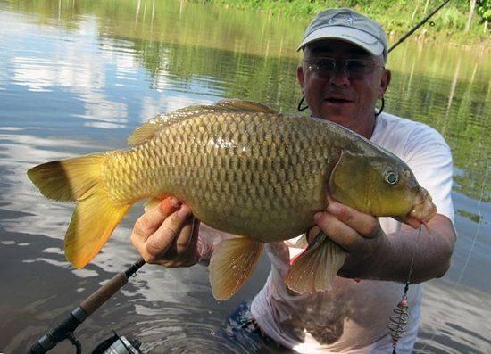 Рыбалка в ставрополе и ставропольском крае: куда поехать платно? рыбалка по погоде в просянке, кизиловке и других местах