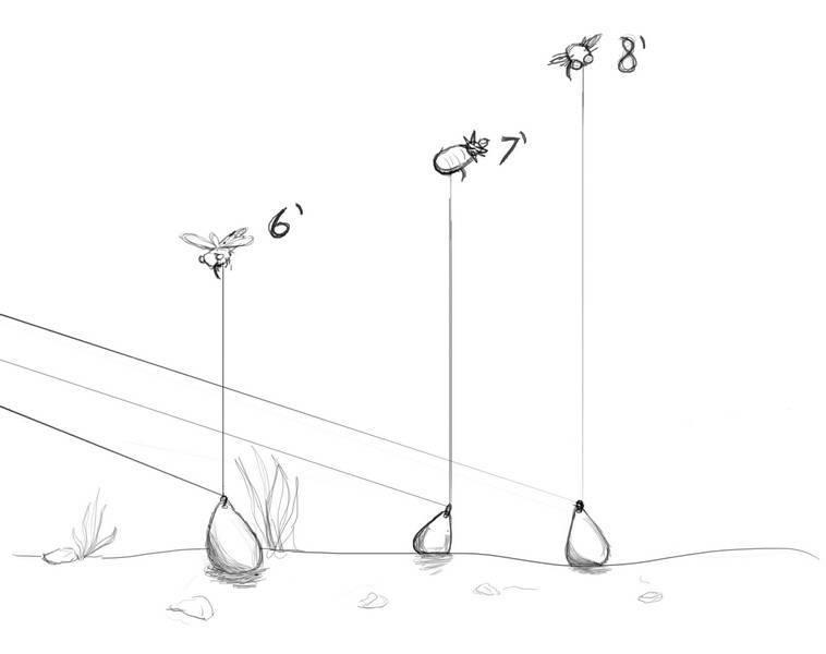 Оснастка зиг риг - тактика 3 зиг-ригов на разной глубине
