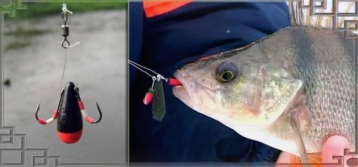 Ловля окуня: прикормка для рыбалки. как поймать на поплавочную удочку и ультралайт? размер крючков на морского окуня, ловля на отвес с лодки и фидер