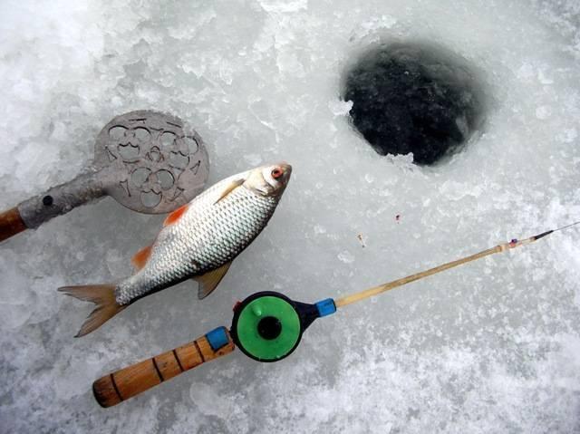 Ловля хариуса в феврале на мормышку - читайте на сatcher.fish