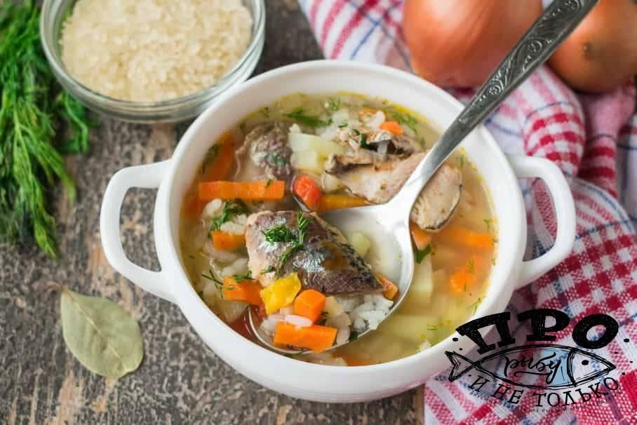 Рыбный суп — 6 рецептов супа из консервированной сайры