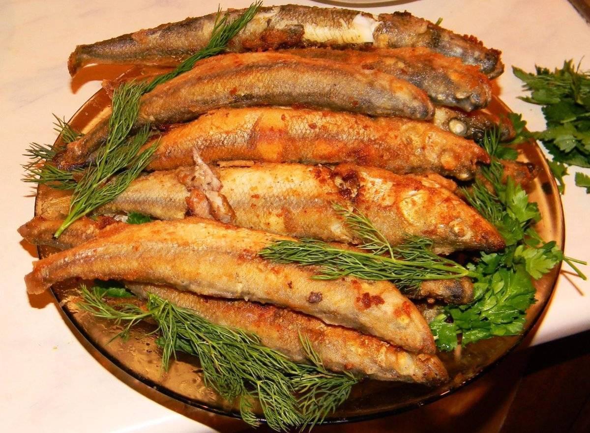 Рипус: описание вида и особенности ловли, рецепты приготовления солёной и жареной рыбы, запекание в духовке