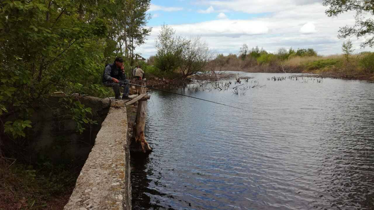 Васильевские озёра в тольятти — рыбалка, на карте, как проехать, отзывы, фото