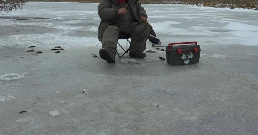 Ловля ротана зимой: снасти, приманки, техника ловли со льда