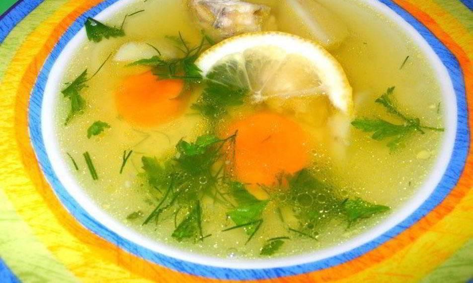 Уха из стерляди в домашних условиях: рецепты приготовления, как правильно сварить суп
