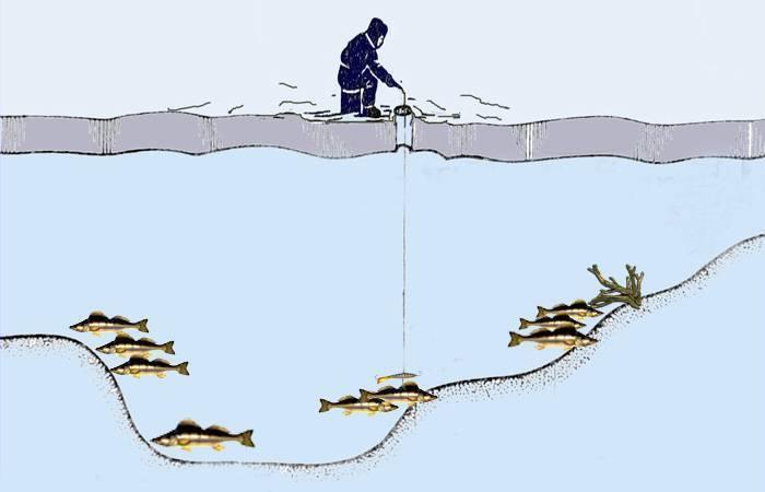 Рыбалка попервому льду