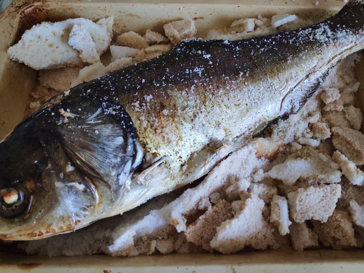 Рыба запеченная в соли — 2 вкусных рецепта приготовления