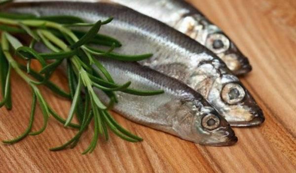Путассу — польза и вред, как готовить рыбу, состав