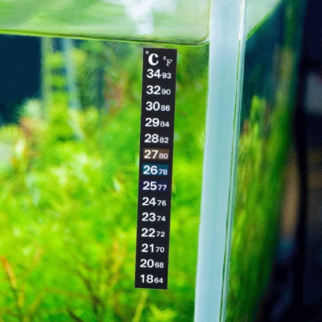 Температура воды в аквариуме для рыбок: какой должна быть оптимальная температура температура воды в аквариуме для рыбок: какой должна быть оптимальная температура