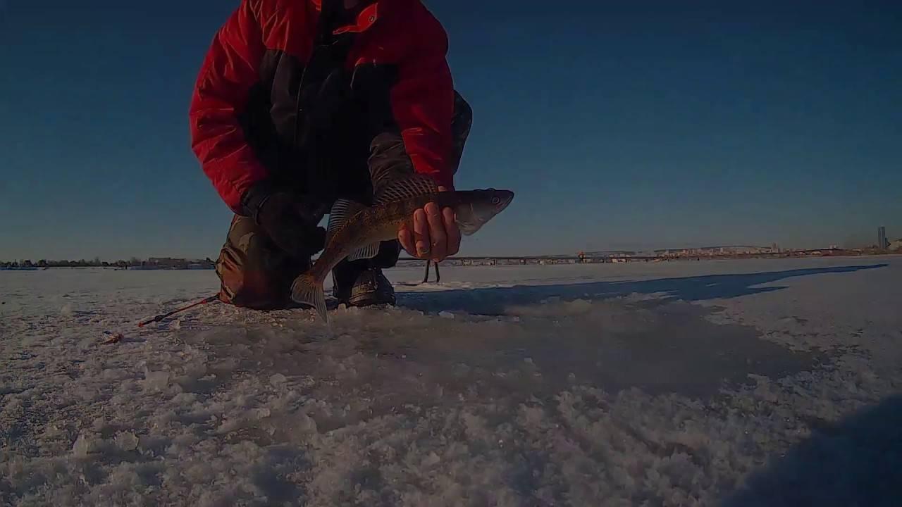 Особенности зимней рыбалки, как и какую рыбу, ловить зимой