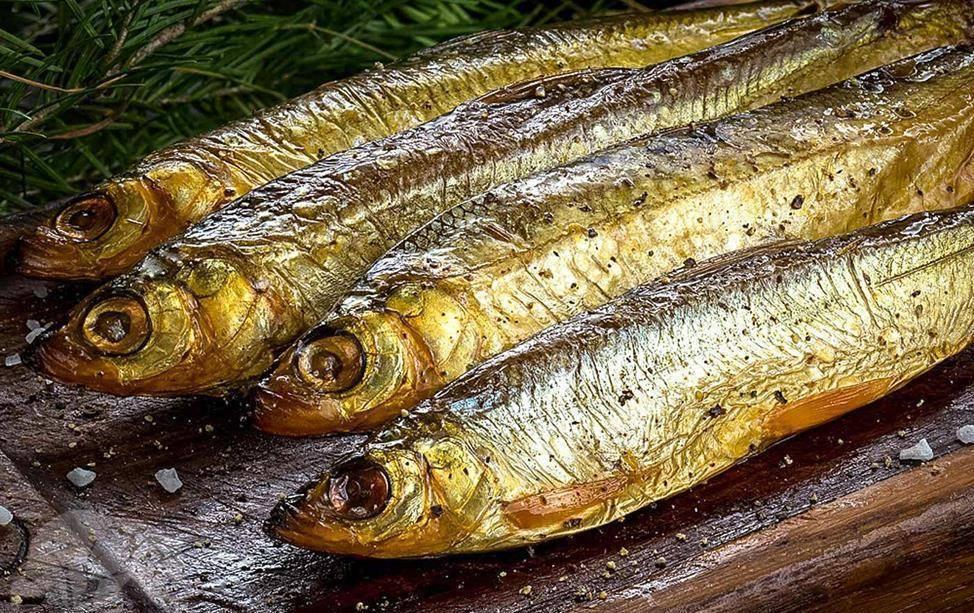 Рыба ряпушка: беломорская, сибирская и другие подвиды - сайт о