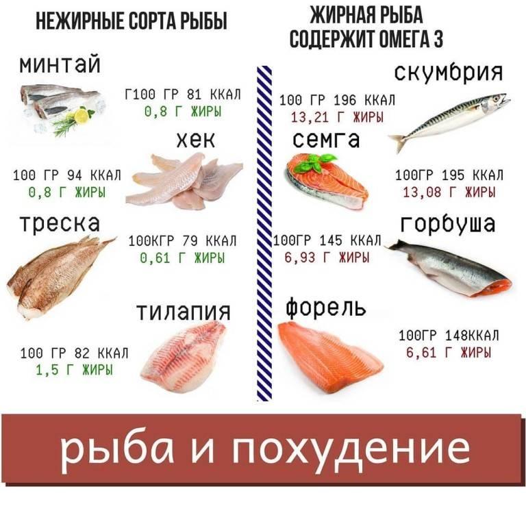 Судак, жареный на сковороде – 6 рецептов приготовления вкусной рыбы