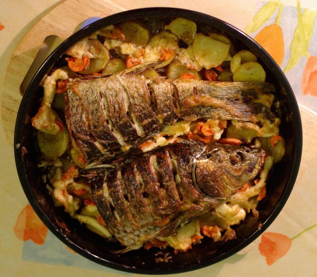 Сазан в духовке с картошкой ? рецепты приготовления, в фольге, в рукаве, сазан фаршированный, запекаем в сметане, видео